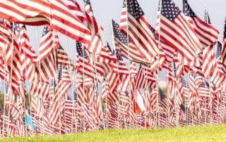 Flags for Veterans Day